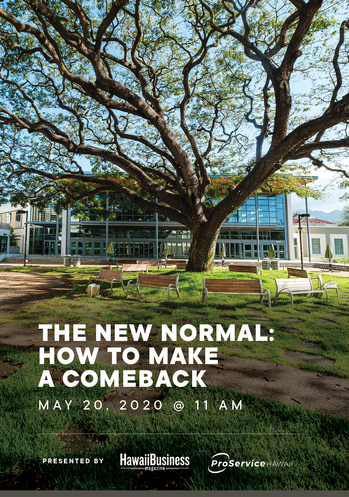 The New Normal: How to Make a Comeback
